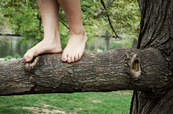 tree-toes
