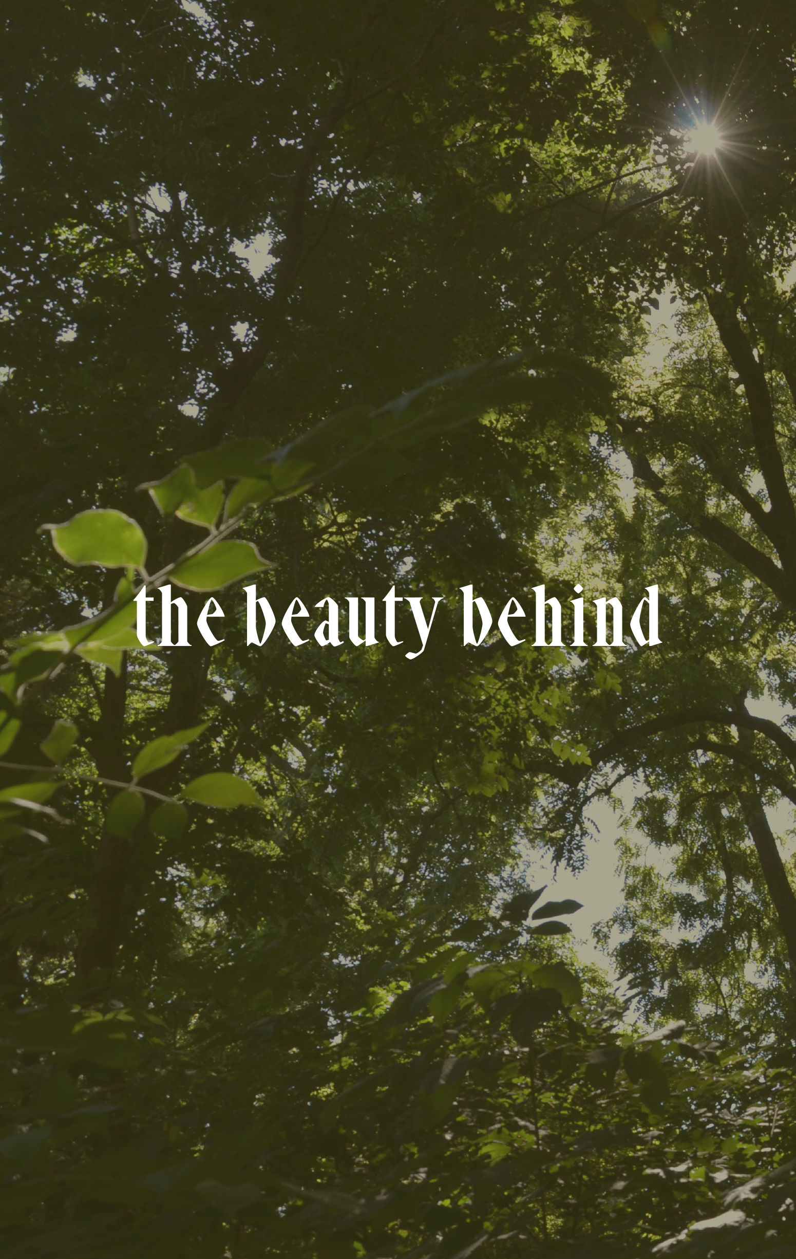 the-beauty-behind-17_cover